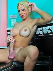 Tgirl hottie posing her enormously big dick